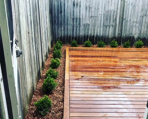 Concord landscaping