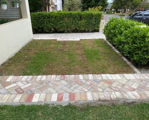 Inner west turf and lawns