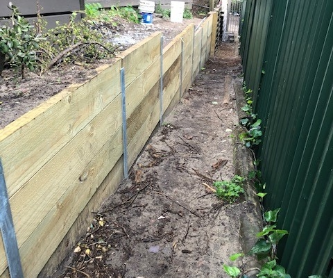 Retaining walls and path in Edgecliff