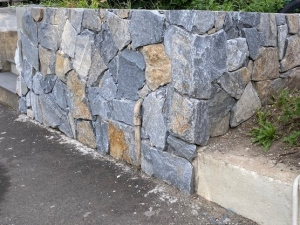 Stone wall at Forest Lodge