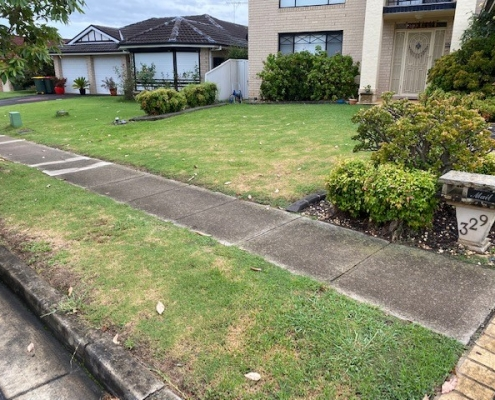 Before new lawn in the Hills District