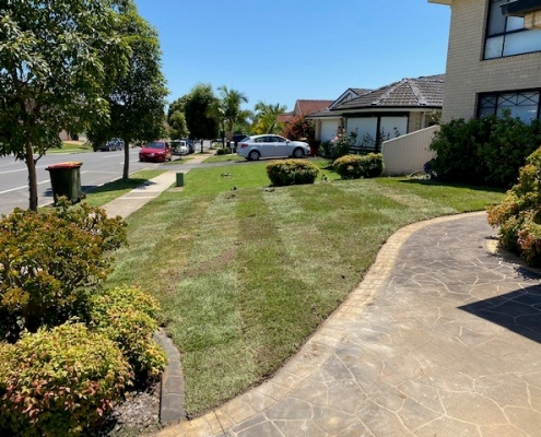 Turf and lawns in Glenwood