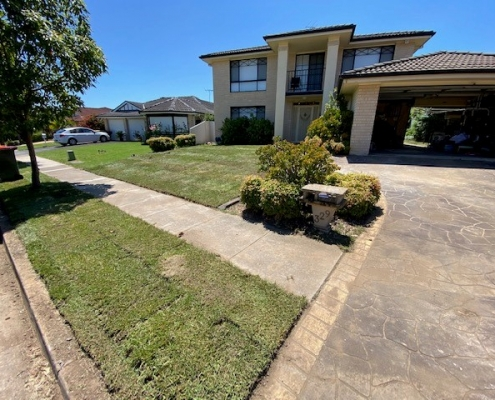 New lawns in the Hills district