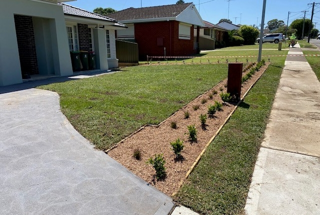 Front garden bed and mass planting in Greystanes