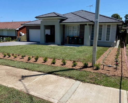 Greystanes turf and lawns