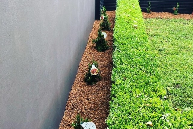 Fencing, wall and garden bed in Rozelle