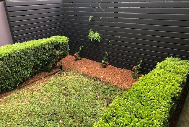 Fencing, lawn and garden bed in Rozelle